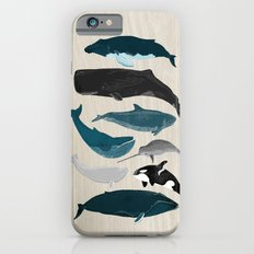Whales - Pod of Whales Print by Andrea Lauren iPhone 6 Slim Case