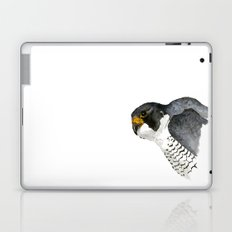 Peregrine Falcon Laptop & iPad Skin