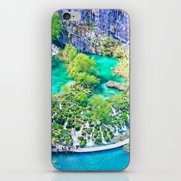 Waterfall Oasis iPhone Skin