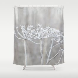 cow parsley plant  with hoarfrost in winter Shower Curtain