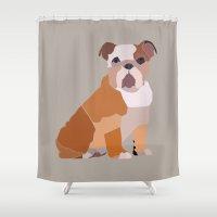 english bulldog Shower Curtains featuring English Bulldog by ANIMALS + BLACK