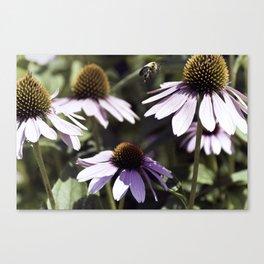 Bee-utiful Canvas Print