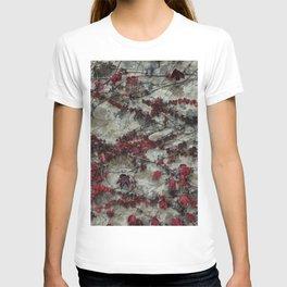 Edera - Castello Banfi - Tuscany T-shirt