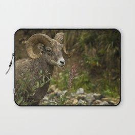 Ram Eating Fireweed Laptop Sleeve