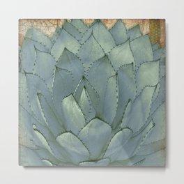 Agave Succulent Cactus Metal Print