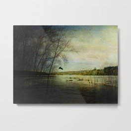 Sacred Spring Songs at the Bashakill Metal Print