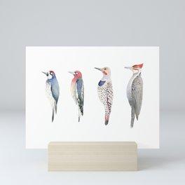 Woodpeckers, Sapsucker, Flicker Mini Art Print