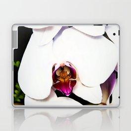 Cascading Moth Laptop & iPad Skin