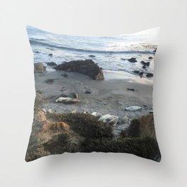 California_Seals Throw Pillow