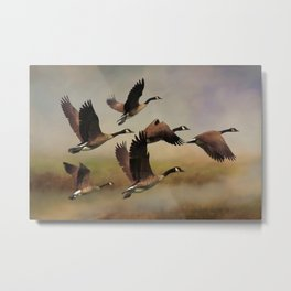 Geese On A Foggy Morning Metal Print