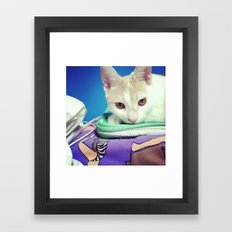 Majestic Kitty Framed Art Print
