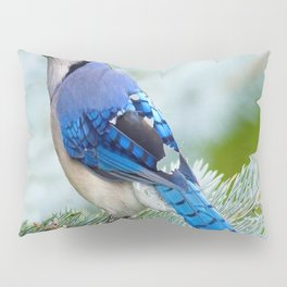 Blue Jay  in Winter Pine Tree Pillow Sham