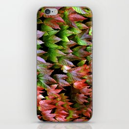 Virginia Creeper iPhone Skin