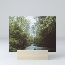 Peaceful Forest, Green Trees and Creek, Relaxing Water Sounds Mini Art Print