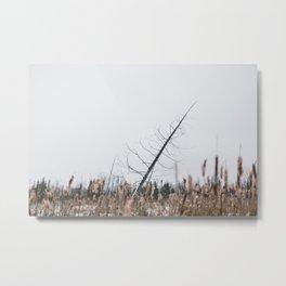Perfect Tree Metal Print