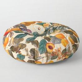 Vintage Fruit Pattern IX Floor Pillow
