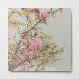 Sweet Pink Magnolia Metal Print