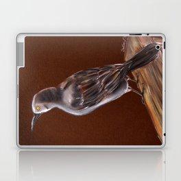 Carib Grackle Laptop & iPad Skin