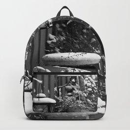 Winterscene in a garden. Backpack