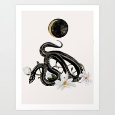 Magnolia Queen Art Print