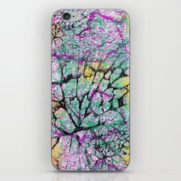 Colourfully Cracked iPhone Skin