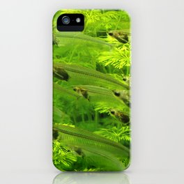 Green Fishes iPhone Case