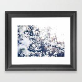Cherry Blossom ❁ Framed Art Print