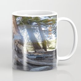 road trip, tree, not normal, roots above ground Coffee Mug
