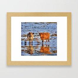 Sarah & Hamish - Highland Cattle Framed Art Print