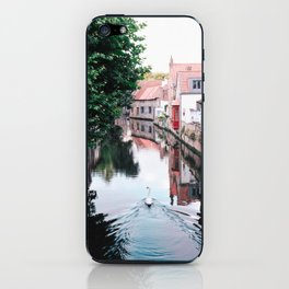 Swan in Belgium iPhone Skin