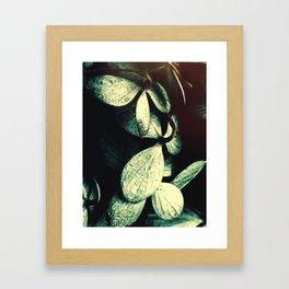 Moon Lust Framed Art Print