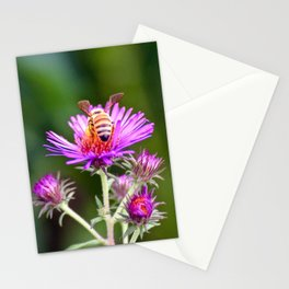 """Honey Bee's Haven"" Stationery Cards"