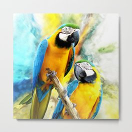 Macaw friends Metal Print
