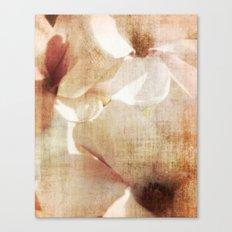 Magnolia memory Canvas Print