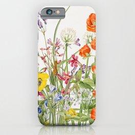 Wild colorful flower vintage illustration background iPhone Case