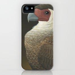 Guadalupe Caracara (Caracara lutosa) iPhone Case