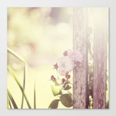Rosey day Canvas Print