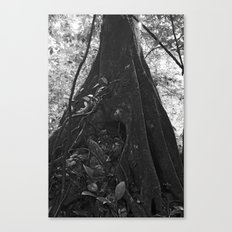Foundation No. 2 Canvas Print
