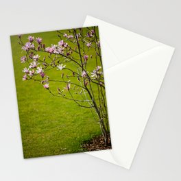 Vibrant pink Magnolia blossoms Stationery Cards