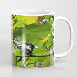 Leaf in the Light Coffee Mug