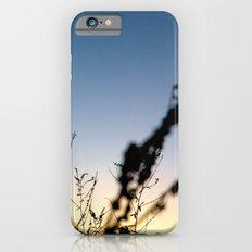 Sunset Contrast Slim Case iPhone 6s