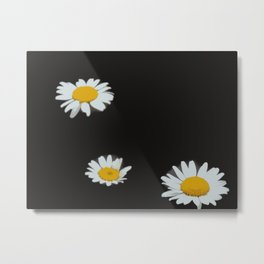Floating Flower Heads Metal Print