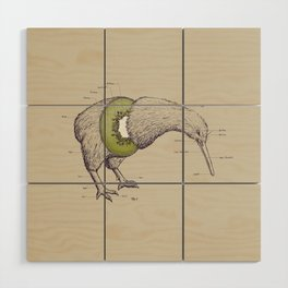 Kiwi Anatomy Wood Wall Art