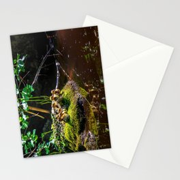 Mallard ducklings on a stone Stationery Cards