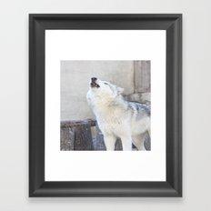 Howling Wolf 3 Framed Art Print