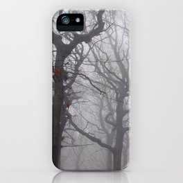 Last day of autumn iPhone Case