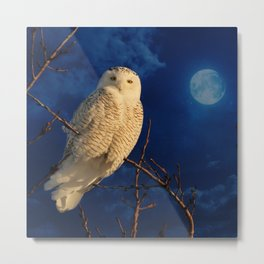 The owl and mystical moon Metal Print