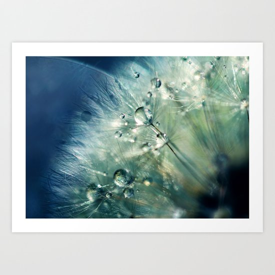 Dandelion Drama Art Print