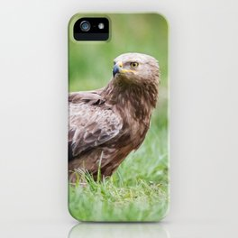 Lesser Spotted Eagle iPhone Case