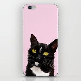 Black Cat in Pink iPhone Skin